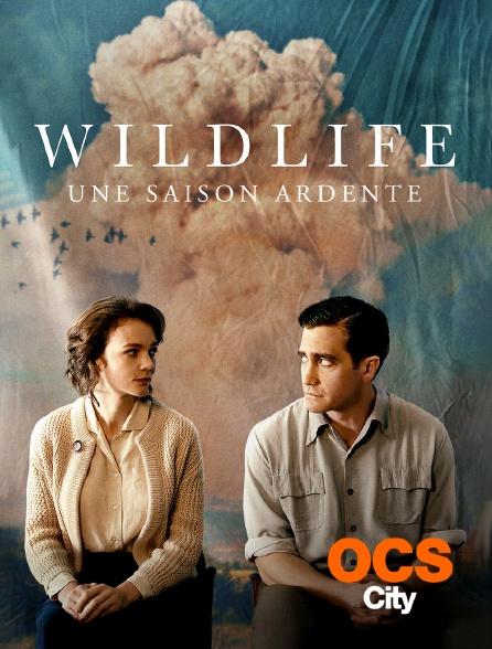 OCS City - Wildlife : une saison ardente