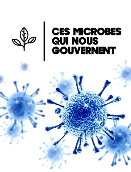 Ces microbes qui nous gouvernent