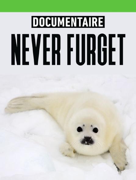 Never furget