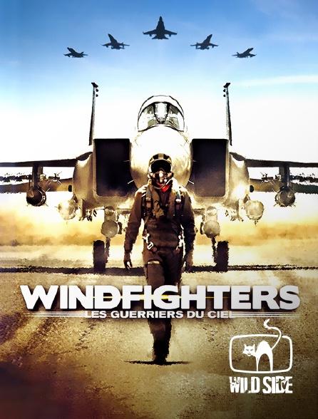 Mango - Windfighters : les guerriers du ciel