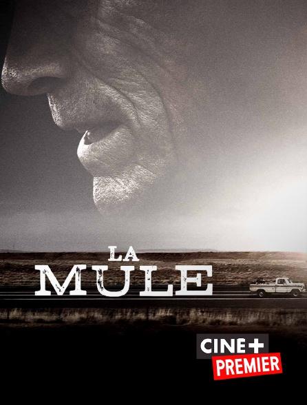 Ciné+ Premier - La mule