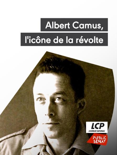 LCP Public Sénat - Albert Camus, l'icône de la révolte