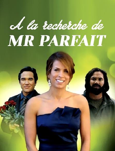 A la recherche de Mr Parfait