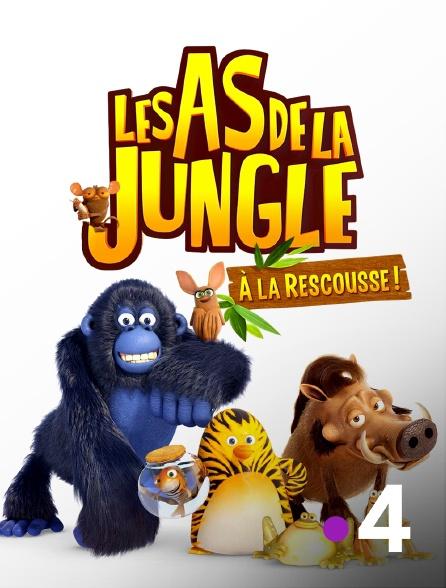 France 4 - Les as de la jungle à la rescousse en replay