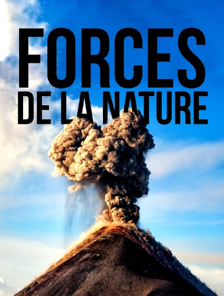 Forces de la nature