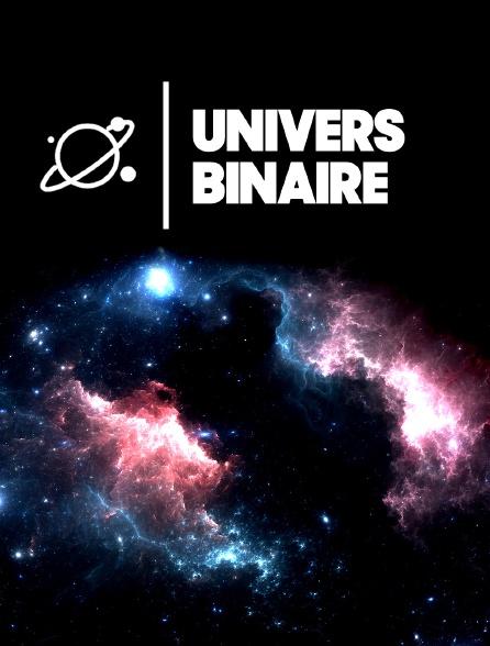 Univers binaire