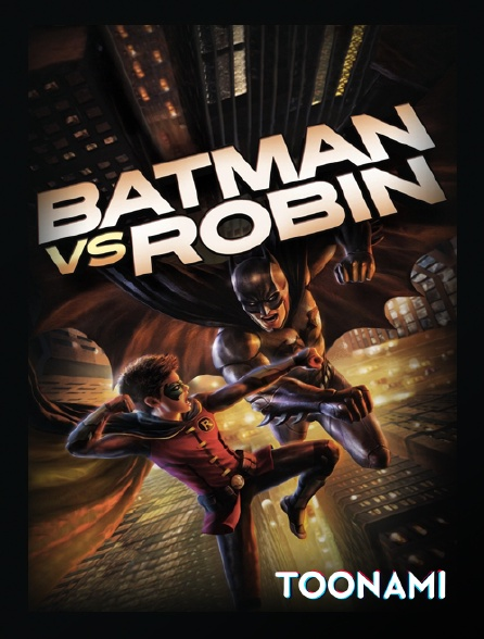 Toonami - Batman et la conspiration des hiboux