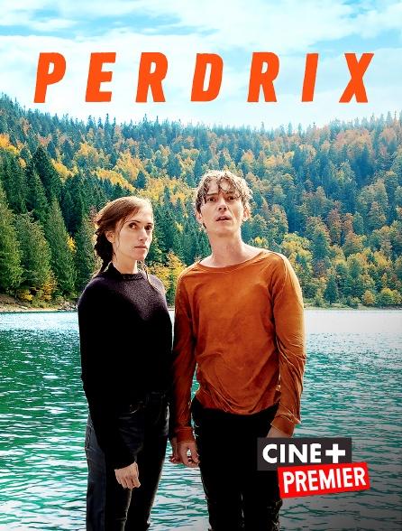 Ciné+ Premier - Perdrix