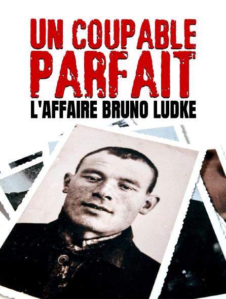 Un coupable parfait : L'affaire Bruno Lüdke