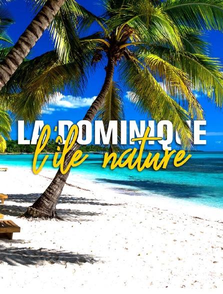 La Dominique, l'île nature