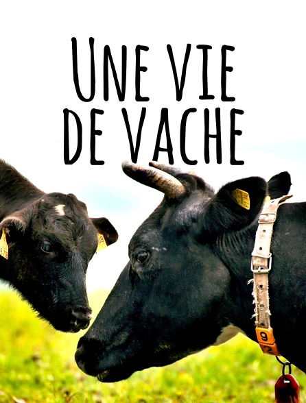 Une vie de vache