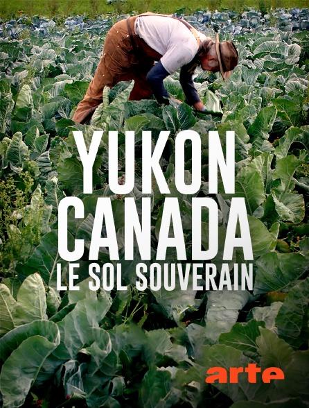 Arte - Yukon, Canada : le sol souverain