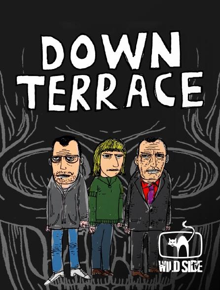 Wild Side TV - Down Terrace