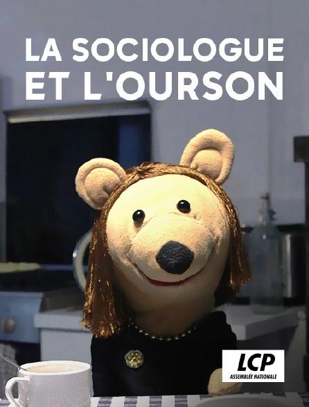 LCP 100% - La sociologue et l'ourson