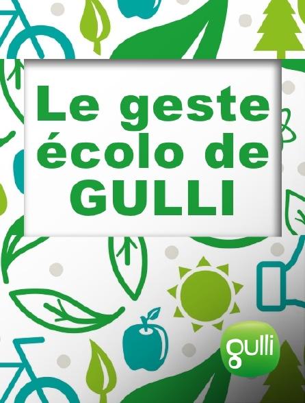 Gulli - Le geste écolo de Gulli