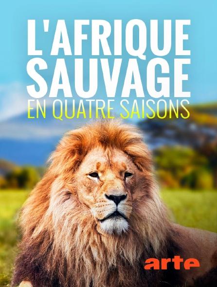 Arte - L'Afrique sauvage en quatre saisons