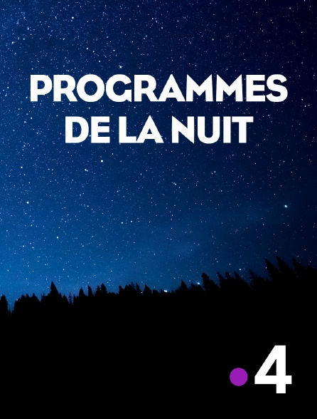 France 4 - Interruption des programmes
