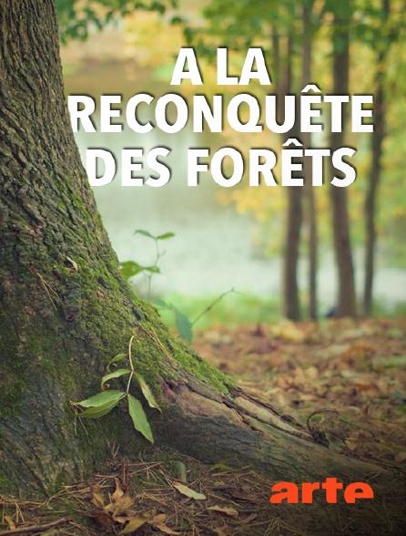Arte - A la reconquête des forêts