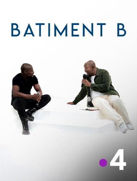 France 4 - Bâtiment B