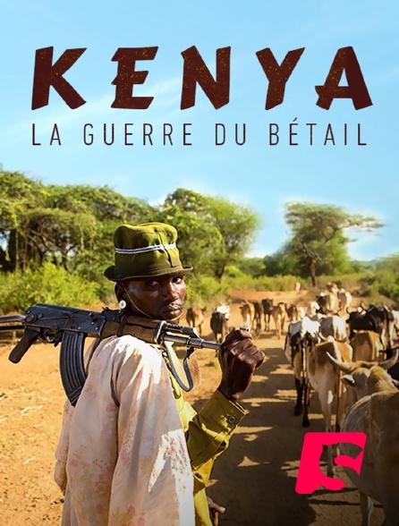 Spicee - Kenya : la guerre du bétail