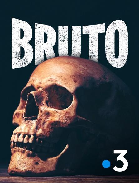 France 3 - Bruto