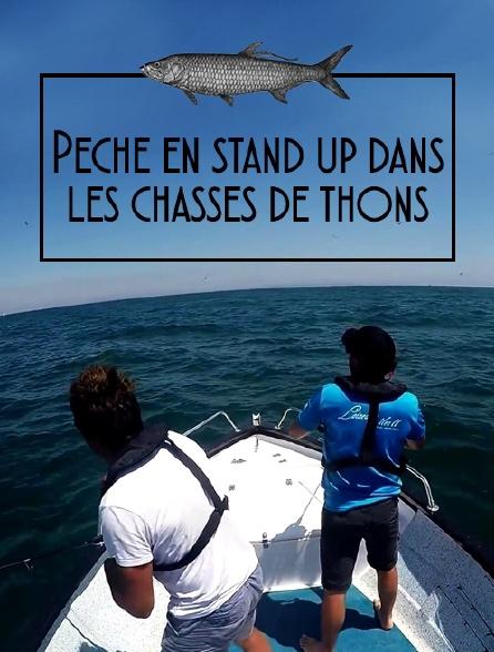 Pêche en stand up dans les chasses de thons