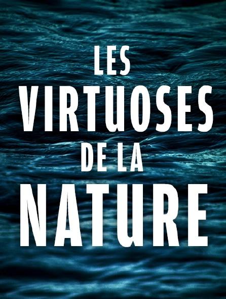 Les virtuoses de la nature