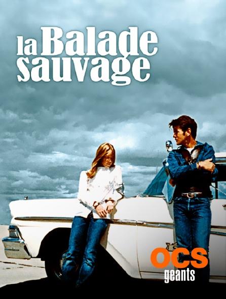 OCS Géants - La balade sauvage