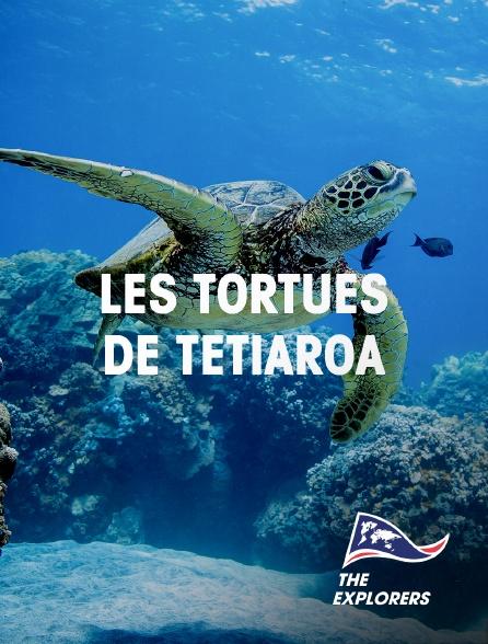 The Explorers - Les tortues de Tetiaroa