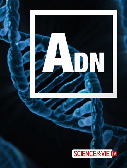 Science et Vie TV - ADN