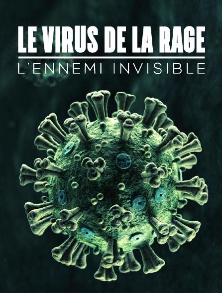 Le virus de la rage, l'ennemi invisible