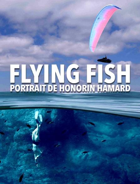 Flying Fish - portrait de Honorin Hamard