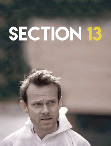 Section 13