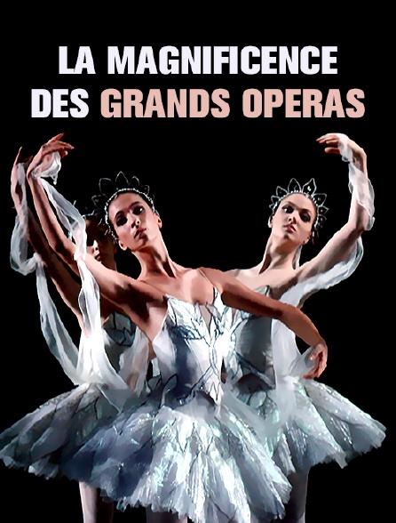 La magnificence des grands opéras