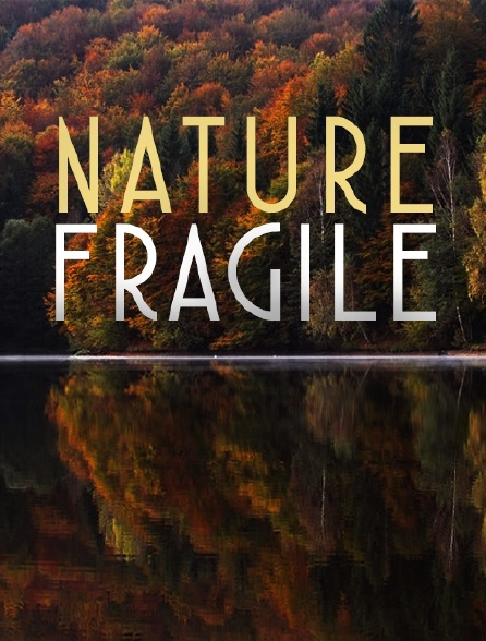 Nature fragile