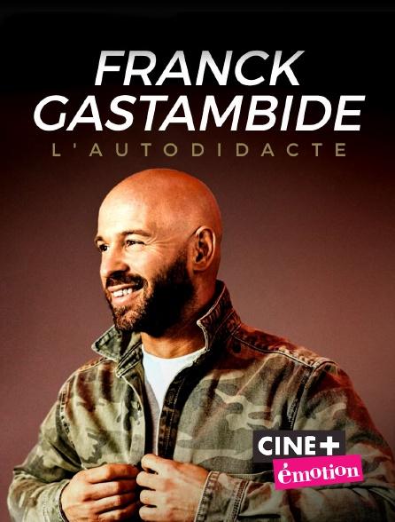 Ciné+ Emotion - Franck Gastambide, l'autodidacte