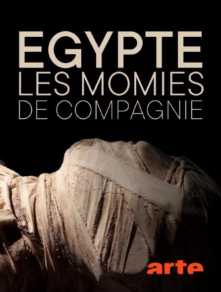 Arte - Egypte : les momies de compagnie