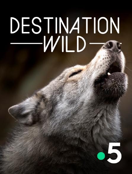 France 5 - Destination Wild