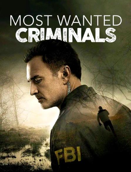 Most Wanted Criminals