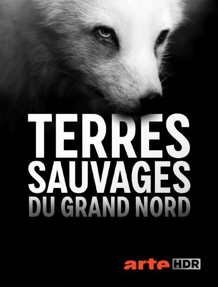 Arte HDR - Terres sauvages du Grand Nord