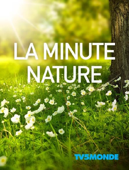 TV5MONDE - La minute nature