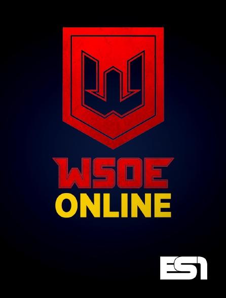 ES1 - WSOE Online