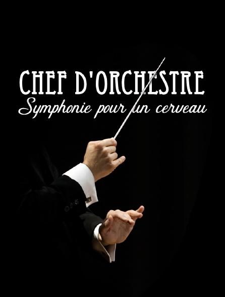 Chef d'orchestre, symphonie pour un cerveau