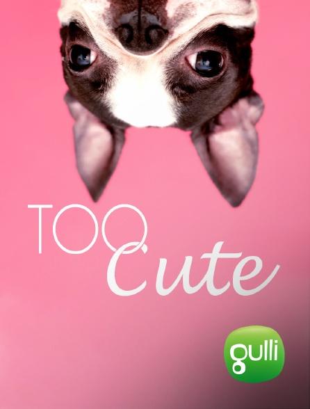 Gulli - Too Cute