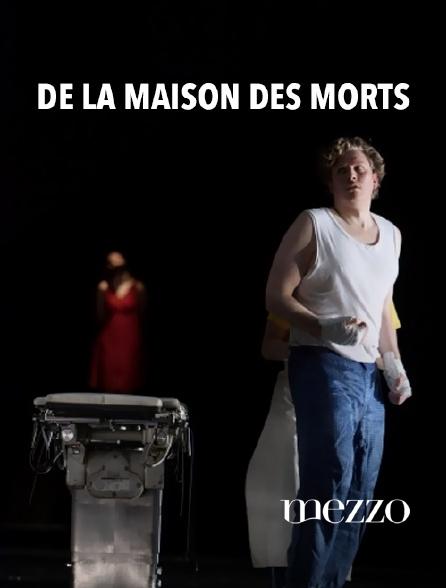 Mezzo - De la maison des morts