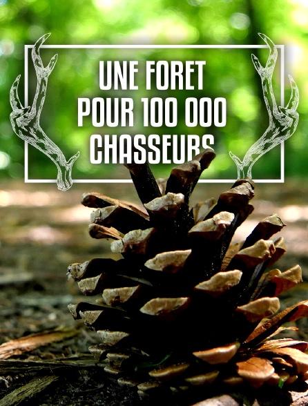 Une forêt pour 100 000 chasseurs