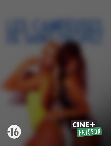 Ciné+ Frisson - Les campeuses de Saint-Tropez