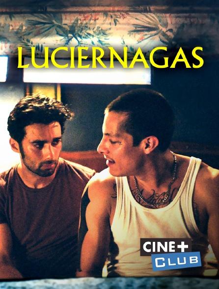 Ciné+ Club - Luciérnagas