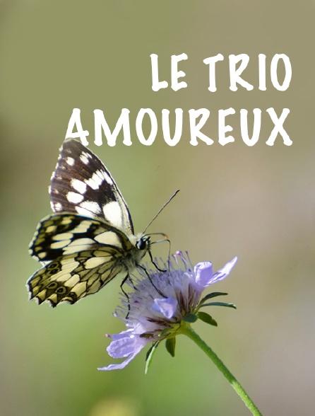 Le trio amoureux