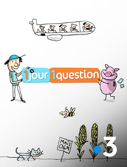 France 3 - Un jour, une question